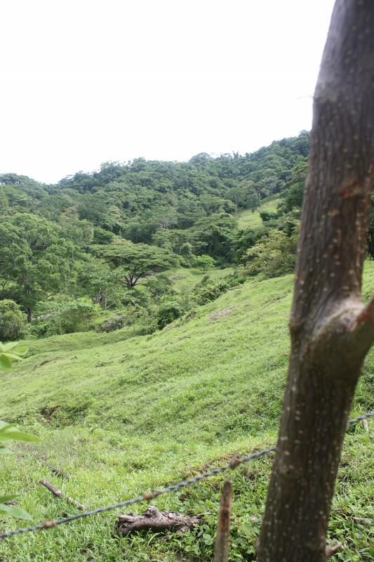 Quad ride from Santa Teresa to Montezuma