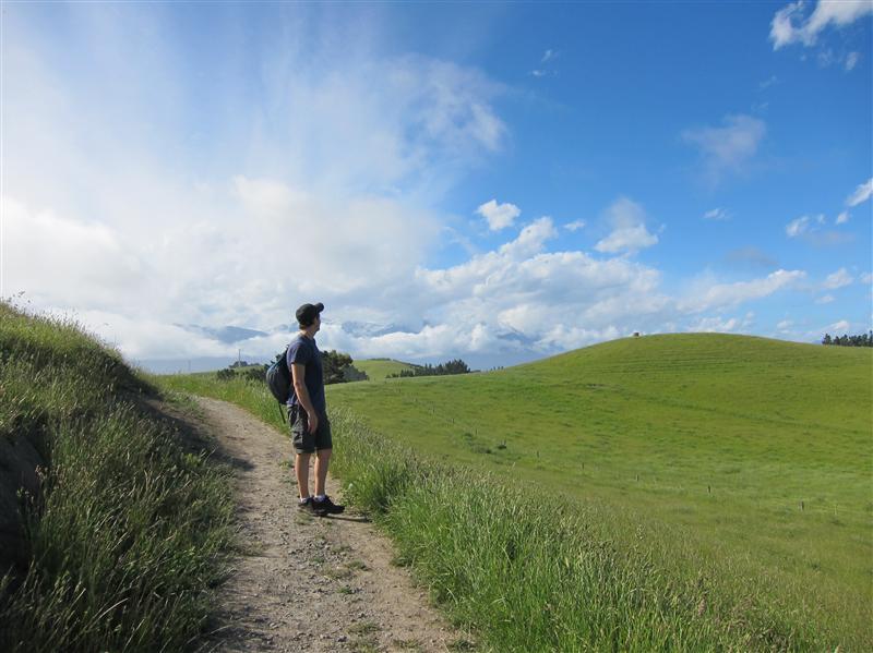 Photo from Kaikoura, New Zealand