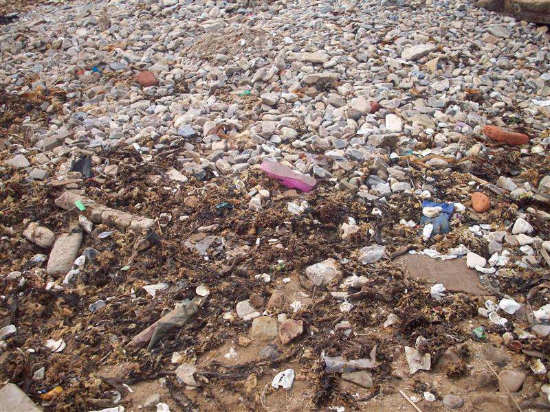 Count the shoes, 1st we counted starfish but there were so many more shoes so it was a little game each night, don't worry, the recyclers came each day to collect them.