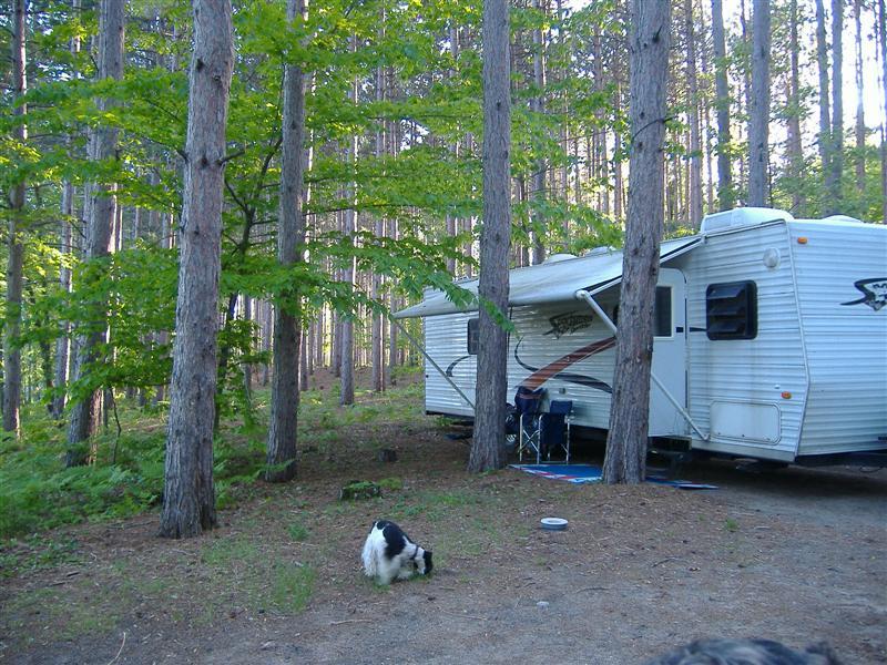 Minnie Pond Campsite