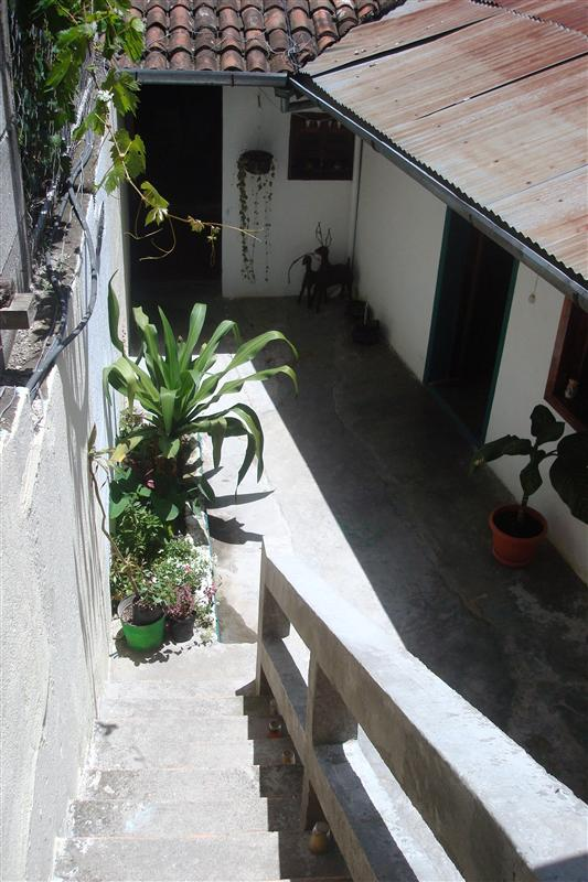 Patio in our Guest House view from the above room