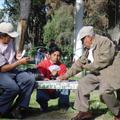 Old dudes playing cards in the park, this should happen at home more often!