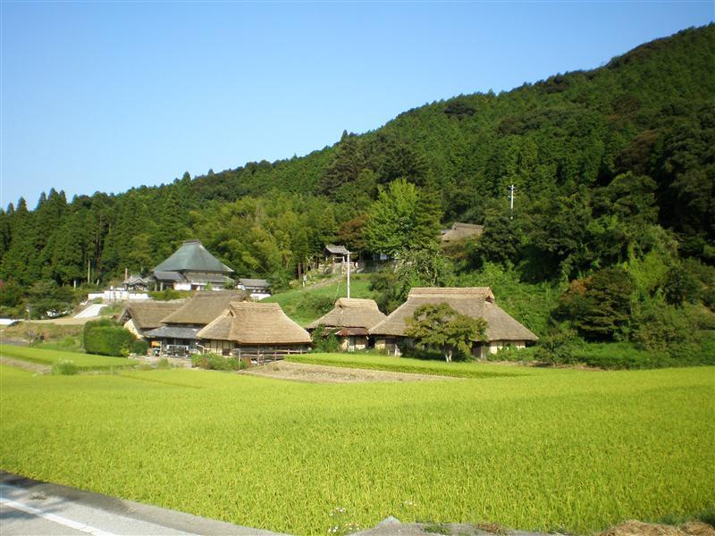 Photo from Hattoji, Japan