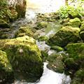 river Praca