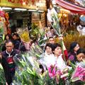Flower market.  A little nuts!