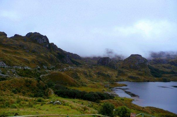 The splendor of Cajas on a cold foggy morning