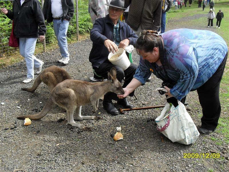 Photo from Burnie, Australia