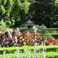 Medeterainian garden