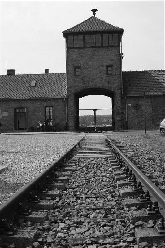 Rail into Birkenau