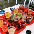 Testing 16 different varieties of Coke products from around the world